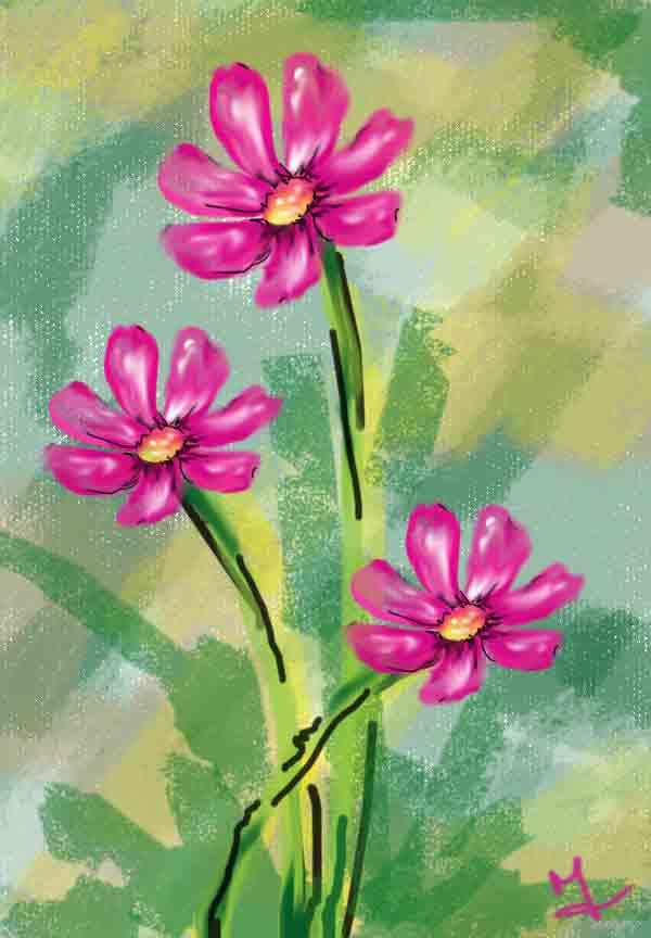3-pink-flowers