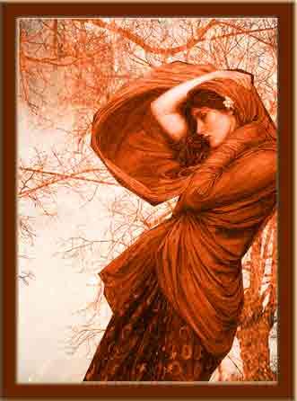 boreas-19032