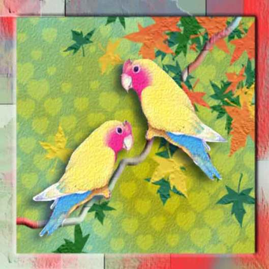 lovebirds-4-x41