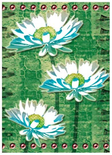 daisies-copy